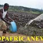 Changement climatique et irrigation: A Gasabo, les agriculteurs projettent les conflits d'Utilisation de l'eau pendant la saison sèche susceptible d'affecter leurs plantes
