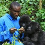 Come and See! Visit Rwanda Now