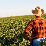 New Nonprofit, World AgroEcology Alliance, Launch from Washington, D.C.